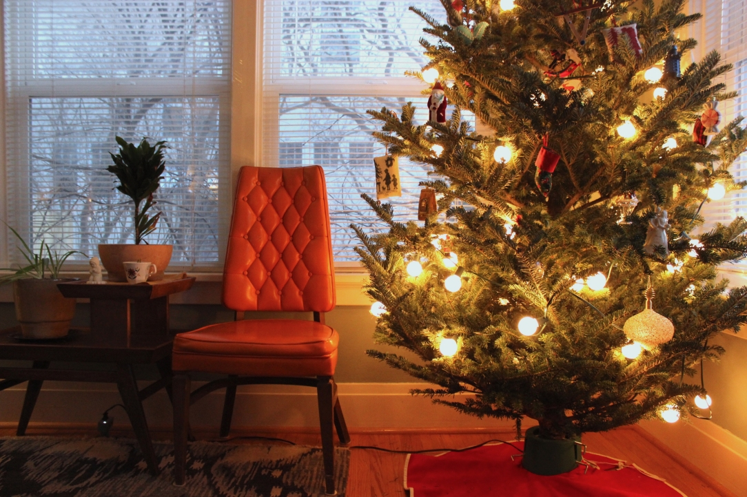 Cozy Christmas House Fargo